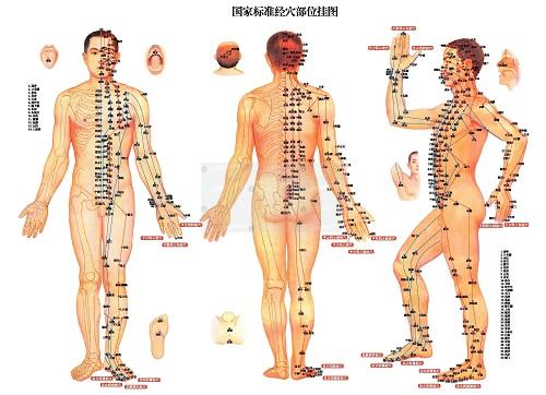 akupunkturpunkter på kroppen